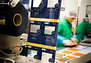 produkcja-pakowanie-lososia-norwegia-praca